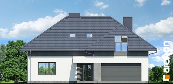 Dom-medzi-letnymi-fialkami-g2__264