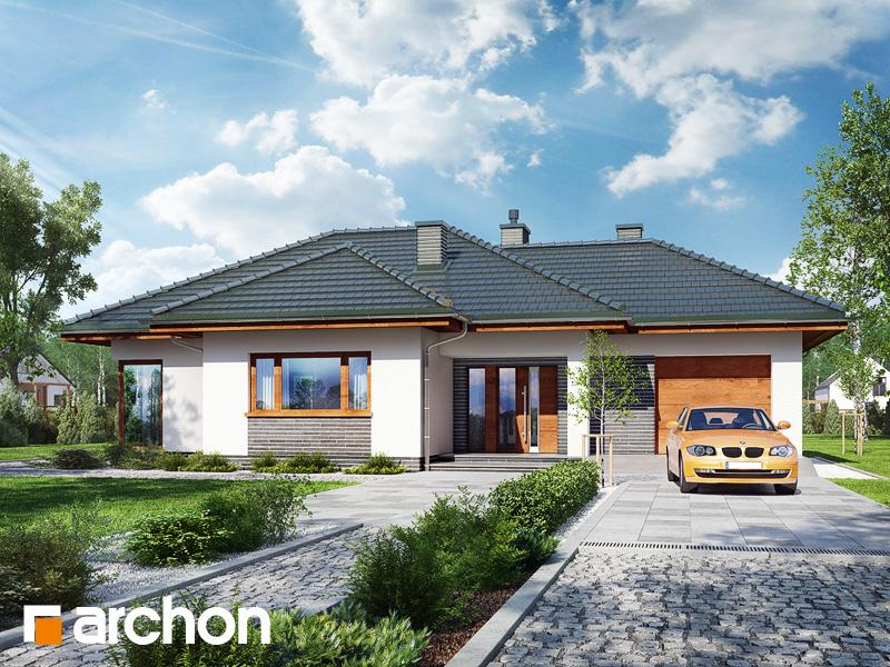 Dom v záružlí - Vizualizácia 1