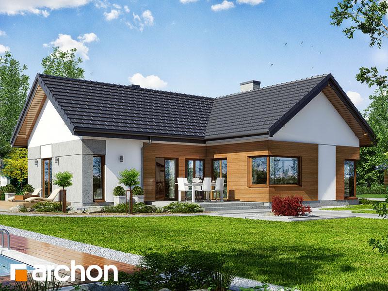 Dom v galách - Vizualizácia 1