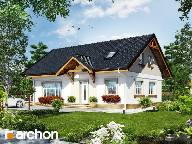 Dom medzi arnikou (PD) - Vizualizácia 1