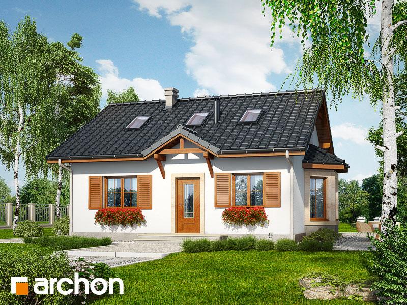 Dom v bobuliach (PD) - Vizualizácia 1