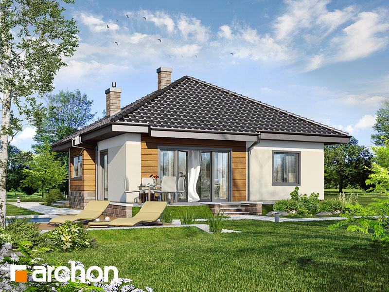Dom v drieňoch - Vizualizácia 1