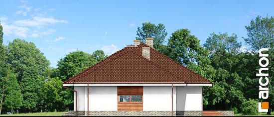 Dom-pod-rozkvitnutou-jablonou-2-g2__265