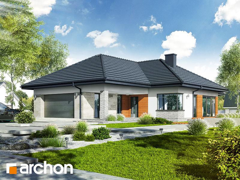 Dom v araukárie (G2) - Vizualizácia 2